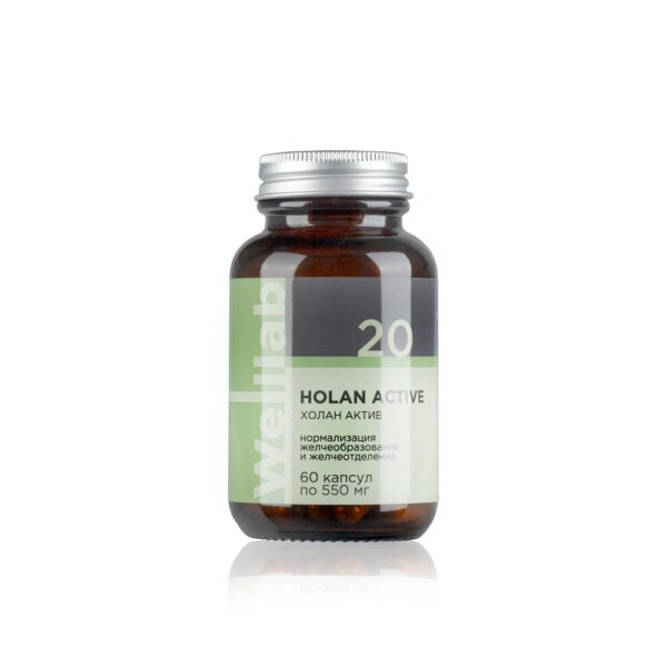 Welllab HOLAN ACTIVE, 60 капсул 2